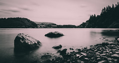 Peace & Quiet.. (Emma Yeardley) Tags: happyplace lakevyrnwy lake trees nature landscape bw le longexposure slowshutter wales countryside nikon d7500 peaceful
