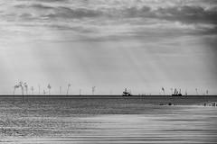 Fishing Boats (g_heyde) Tags: krabbenkutter fishingboat nordsee northsea priggen hightide spieka sl