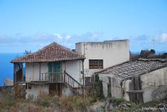 Ікод-де-лос-Вінос, Тенеріфе, Канарські острови  InterNetri  157