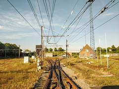 Merging tracks. (Azariel01) Tags: saintghislain wallonie belgique be 2018 faisceau shuntingyard bundel train tracks voies aiguillage shunt switch rails sncb nmbs infrabel signal sein