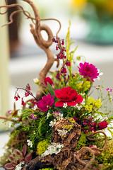 Miniature Flower display (MeTurk) Tags: flower display arrangement
