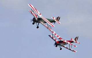 Tutor & Tiger Moth
