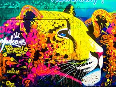 Cheetah (Thomas Hawk) Tags: america california sanfrancisco usa unitedstates unitedstatesofamerica graffiti us fav10 fav25