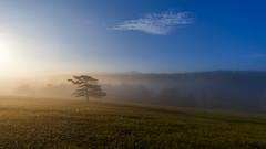 Sunrise on the Ural mountains. #своифото, #пейзаж, #природа, #утро, #рассвет, #дерево, #натура, #восход, #sunrise, #nature, #tree, #Landscape, #sun, #туман, #лучи, #foggy, #ural, #sonya6000, #sonyalfa, #сониальфа (ЛеонидМаксименко) Tags: сониальфа пейзаж восход утро sonyalfa sonya6000 лучи foggy tree nature landscape природа натура ural дерево sun рассвет своифото туман sunrise