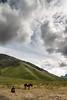 Bromo, Indonesia (pas le matin) Tags: travel voyage world bromo volcano volcan landscape man paysage homme horse cheval sky ciel clouds nuages canon 7d canon7d canoneos7d eos7d asia asie southeastasia indonésie indonesia java