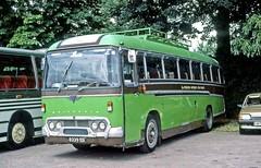 3rd. Stoneleigh (Methodist) Scout Group, Epsom, Surrey: 8329DD on Hampton Court Green (Mega Anorak) Tags: bus coach aec reliance 2mu3ra duple britannia stoneleigh scoutgroup hamptoncourt