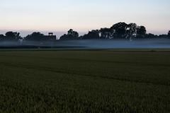 Frühnebel (haraldklein2201) Tags: aussen eschmar morgengrauen mühle natur nebel