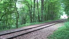 CFL_SSMN_208-218_Train 1900 (Franky De Witte - Ferroequinologist) Tags: spoorwegen eisenbahn chemin de fer railway железная дорога السكك الحديدية estrada ferro 鉄道 ferrocarril 铁路 ferrovia 철도