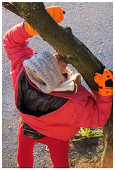 When Tree-Hugging Isn't Enough (HereInVancouver) Tags: man winter tree kissing fromabove candid colorful orange red thingstodobythewater englishbaypark vancouverswestend vancouver bc canada canong3x seawall