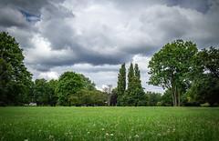 Alsterpark (max.stolbinsky) Tags: green blue sky three grass alster park hamburg hh