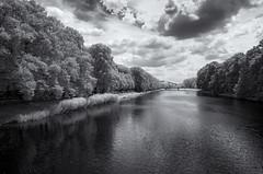 Weiße Elster Leipzig (inmyeyespictures) Tags: weise elster leipzig infrarot infrared ir630 sonya7r river fluss deutschland germany sachsen saxony schwarz weis black white