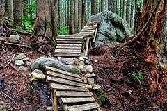 Team-Konstructive-Dream-Bikes-Trail-Trip-Vancouver-2018-Ladder-Trail