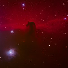 Horsehead nebula RGB (eric ganz) Tags: horseheadnebula nebula telescope astrophotography