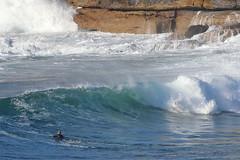 2018.07.15.08.54.16-ESBS Bronte red cap seq10-011 (www.davidmolloyphotography.com) Tags: bodysurf bodysurfing bodysurfer bronte sydney newsouthwales australia surf surfing wave waves
