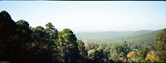 Dandenong Ranges National Park, yet again!! (Matthew Paul Argall) Tags: anscopixpanorama fixedfocus focusfree 35mmfilm kodakultramax400 kodak400 ultramax 400speedfilm 400isofilm panorama panoramic halina haking kalorama mountainview plasticlens