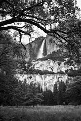 Yosemite Village (Yaecker Photography) Tags: yosemite yosemitenationalpark waterfall waterfalls waterporn mountains blackandwhite blackwhite nationalpark yosemitevalley frame trees