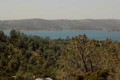 IMG_0445 (Anthony Lockstone) Tags: don pedro lake california