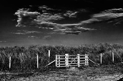 This way please........ (Missy Jussy) Tags: northumberland fence gate grass sanddunes field camping campingtrip sky clouds spooky hemscotthillfarm mono monochrome moodylandscape bw blackwhite blackandwhite darkness light sunlight 5d canon5dmarkll canon5d canoneos5dmarkii fantastic50mm farmland 50mm ef50mmf18ll ef50mm canon50mm canon holiday