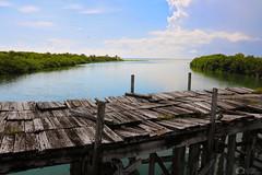 Laguna (antoniomolitierno) Tags: laguna mare jungla alberi legno pontile ponte cielo nuvole natura biosfera escursione lagoon sea jungle trees wood pier bridge sky clouds nature biosphere excursion canon eos 760d