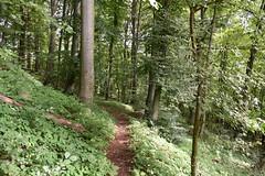 DSC_1816 (gregorv) Tags: slovenia slovenija kum planine mountains mountain nature narava