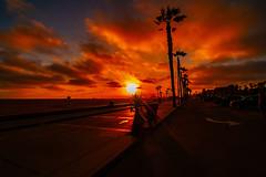 02 (morgan@morgangenser.com) Tags: sunset red orangeyellow blue pretty cloud silhouette sun evening dusk palmtrees bikepath sand beach santamonica pacificpalisades beautiful black dark cement amazing gorgeous inawe ca