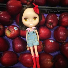 """BaD- 6/19 """"Red Delicious"""" • <a style=""""font-size:0.8em;"""" href=""""http://www.flickr.com/photos/52948471@N06/42889094671/"""" target=""""_blank"""">View on Flickr</a>"""