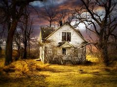 Abandoned 15 (mrbillt6) Tags: landscape rural prairie abandoned house trees grass outdoors country countryside northdakota