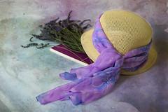 (adelina_tr) Tags: lifeisarainbow summer texture kerstinfrank violet book