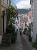 Smau i Bergen (Linepusle) Tags: bergen wooden houses buildings alleys cat flowers smug smau tak katt