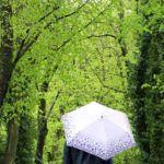 Cum va fi vremea în săptămâna 25 iunie – 1 iulie (Bacau) Tags: meteo vremea romania prognoze meteorologie