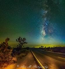 Joshua Tree & Road under the Stars (The Happy Traveller) Tags: milkyway milkywaygalaxy starrysky stars starrynight usnationalparks joshuatreenationalpark california