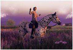 Lavender (~Nancy Riddle Carter~) Tags: horse man men old older golden years handsome gentlemen gentleman grey fenrir knabstrub appaloosa speckles freckles horses water waterhorse whrhqh