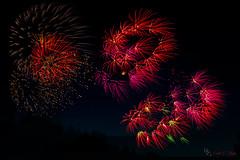 Pop Pop Pop (Donald.Gallagher) Tags: fireworks greenwoodsquare horizontal longwood longwoodgardens northamerica pa pennsylvania public summer typecolor typelightroom typemanualfocus typeportrait typetelephoto usa