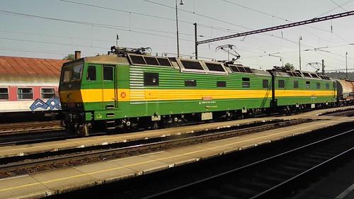 DSCN3530