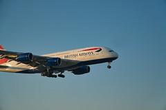 BA A380-800 (joe.woods2209) Tags: a6300 lhr a6500 a6000 aircraft airport airbus heathrow a380 a380800 boeing a350900 a350 787900 787 777300 british air malasian qantas etihad airways ethiopian virgin 777 777200 pacific cathay gulf 18105