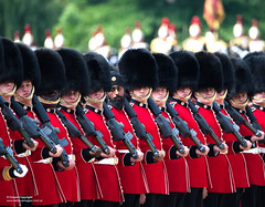 THE QUEEN celebrates her official birthday today at the Trooping the Colour ceremony (Defence Images) Tags: 1stbattalioncoldstreamguards hqlondondistrict divisionsandbrigades westminster queensbirthdayparade militarymusic kingstrooproyalhorseartillery householdcavalrymountedregiment guards grenadierguards coldstreamguards bearskins cavalry buckinghampalace band whitehall britisharmy london army thequeen turban minoritygroup religion sikh occasion troopingthecolour ceremonialevent royalairforce raf clothing tunic belt sambrowne equipment ceremonial bearskin footguards regiments thehouseholdcavalry thehouseholdcavalryregiment theguardsdivision firstbattalion 1stbn 1coldmgds weapons gun firearm smallarms assaultrifle sa80 a2 l85a2 556mm ironsights attachment bayonet defence defense uk british military unitedkingdom gbr