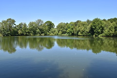 Bury Lake (James Mans) Tags: d5500 nikon rickmansworth aquadrome water lake sky blue trees still calm tree park grass forest river