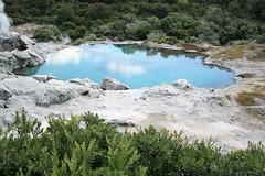 Rotorua, NZ - Whakarewarewa - Prince of Wales Feathers Geyser (zorro1945) Tags: whakarewarewa rotorua nz newzealand princeofwalesfeathersgeyser geyser geothermalvalley tepuia lake colours reflection flickrunitedaward flickrtravelaward