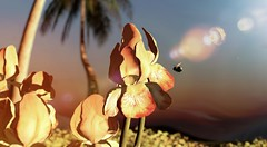 Perfect little Nature (Varosh Santanamiguel) Tags: iheartthecart event exclusive le loveeverlasting flower nature secondlife secondnature sl sim simdesign bee palms summer light iris plant simdecor decorate decor areiyon vsm