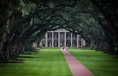 House of Slaves (Rabican7) Tags: louisiana southernlouisiana houseofslaves oakalleyplantation oak trees greenery alley house architecture slavery nationallandmark mississipi sugarcaneplantation road shade