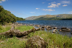 Ullswater (Stephen Reed) Tags: cumbria lakedistrict england summer countryside nikon d7000 lightroomcc