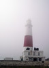 Foggy Saturday at Portland Bill (Tony's Trains and Buses) Tags: portlandbill portland dorset lighthouse
