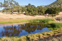 Coulter Pond, Mount Diablo State Park (az3) Tags: mountdiablo lake