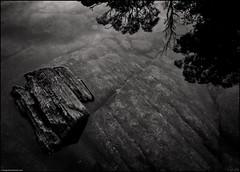 Rock Dreams of Sky (niggyl (well behind)) Tags: douglasapsleynationalparkbichenotasmania apsleygorge apsleyriver waterhole mono monochrome reflection water tasmania fujifilm fujifilmxt2 fujixt2 xt2 fujinon xf23mm14r xf2314r xf2314 bw blackandwhite blackandwhitelandscape bicheno eastcoasttasmania billabong