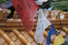 prayer flags - 192/365 (red white blue)