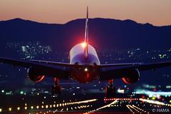 Landing (HAMA-ANNEX) Tags: k1ii hdpentaxdfa150450mmf4556eddcaw itami 伊丹空港 itm ana