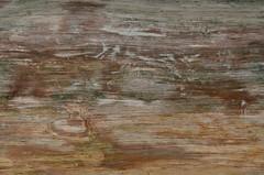 2018 05 06 084 Hunting Island, SC (Mark Baker.) Tags: 2018 america baker carolina hunting island mark may north south us usa beach day outdoor pattern photo photograph picsmark spring states texture united