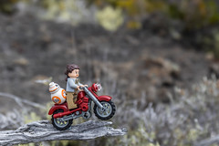 Rey and BB-8 on a motorcycle (Ballou34) Tags: 2017 7dmark2 7dmarkii 7d2 7dii afol ballou34 canon canon7dmarkii canon7dii eos eos7dmarkii eos7d2 eos7dii flickr lego legographer legography minifigures photography stuckinplastic toy toyphotography toys stuck in plastic motorbike bike rey bb8 droid star wars starwars sw branch saintpaul réunion re