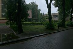 P1160023a_2 (superka_01) Tags: lvov lwow city cityscape park trees treescape львов