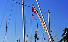 A travers les mats (Diegojack) Tags: morges vaud suisse d7200 nikon nikonpassion manifestation voiles latines port ancien bateaux barques mats ciel pavois groupenuagesetciel